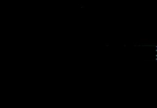 Logo-NAVE black